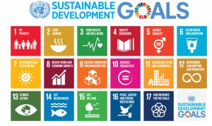 ONU 2017 - Ano Internacional do Turismo Sustentável para o Desenvolvimento. E o que a sua gestão de riscos tem a ver com isso? 2